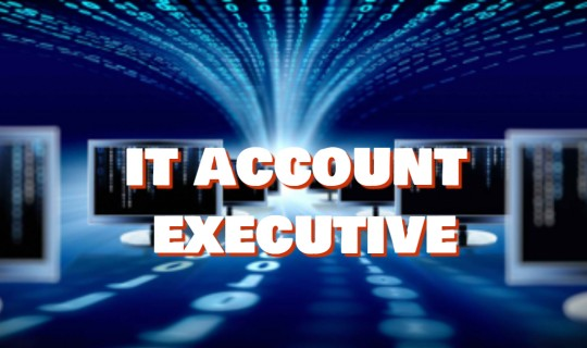 Job Opportunity for IT Account Executive